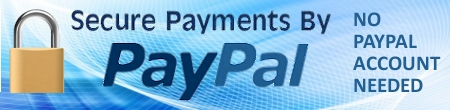 Secure Payments by Paypal Link