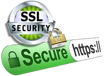 Website Secure Socket Level Certificates